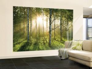 forest-scene-papier-peint-mural